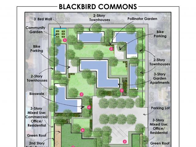 Blackbird Commons site design